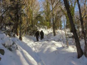 moines-dans-la-neige