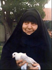 gerondissa-makrina-pigeon